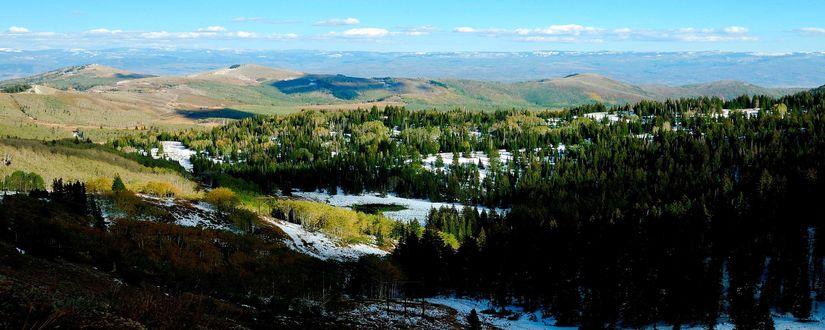 Обои Горы с заснеженным лесом