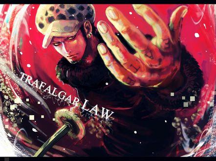 Обои Trafalgar Law / Трафальгар Ло из аниме One Piece / Ван-Пис, Большой Куш