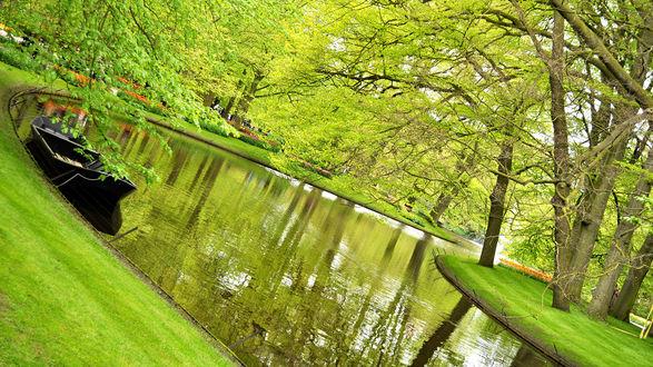 Обои Красивый ухоженный пруд в парке, посредине зеленый островок