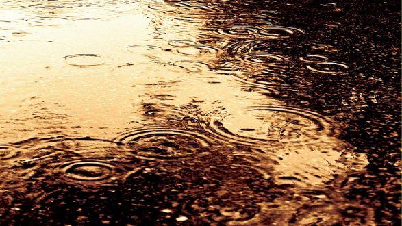 Обои Капли дождя падают в лужу на асфальте