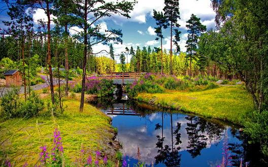 Обои Деревянный мостик, проходящий через неширокий ручей, с отражением на его зеркальной поверхности голубого неба, белых облаков и верхушек деревьев, вокруг моста цветет вереск