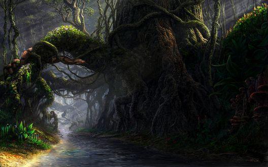 Обои Гигантские корни деревьев, по которым ползет змея
