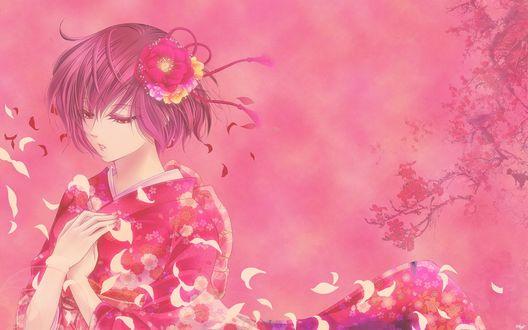 Обои Девушка в розовом кимоно на фоне сакуры с которой облетают лепестки