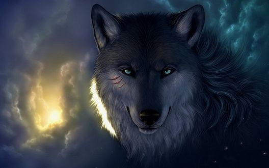 Обои Морда волка смотрящая сквозь облака и звезды