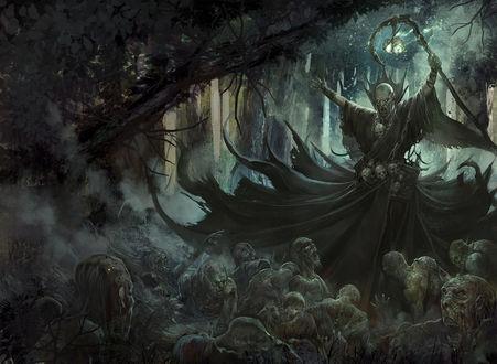Обои Некромант с посохом в руке поднимает зомби в лесу