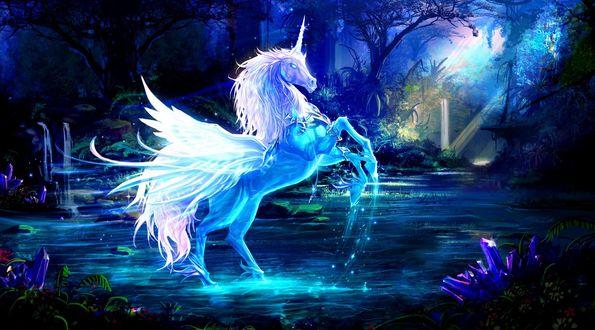 Обои Единорог стоит в воде, вокруг сказочный лес освещается светом луны