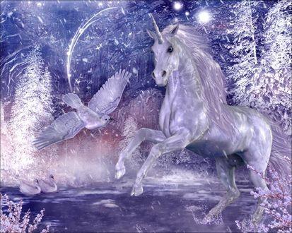 Обои В зимнем волшебном лесу сказочный единорог в воде и рядом птица, поодаль плавают два лебедя