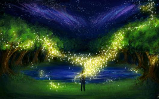 Обои Силуэт мужчины у озера в лесу, над которым летают светлячки
