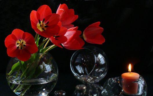 Обои Букет красных цветов петуньи, стоящий в шарообразном сосуде с водой рядом с опрокинутым фужером и горящей свечой на черном фоне