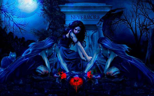 Обои Три девушки на кладбище на фоне полной луны, рядом с ними сидит кот