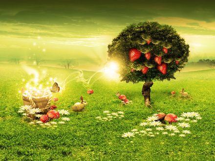 Обои Клубничное дерево в поле с ромашками и кроликами