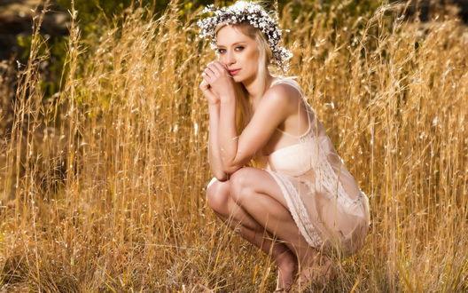 Обои Девушка с венком из ромашек на голове сидит в поле сухой травы
