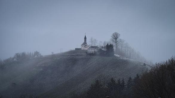 Обои Германия, Баден-Вюртемберг, Генгенбах / Germany, Baden-Wuerttemberg, Gengenbach Церковь на холме, туманным зимним утром, фотограф Roland C. Vogt