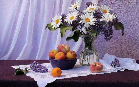 Обои Персики в фиолетовой миске стоят на белой ткани рядом со букетом белых ромашек и сиреневой сирени в стеклянной вазе с водой