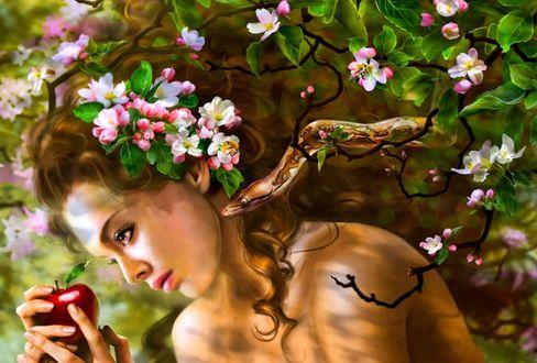Обои Девушка, цветущая яблоня, держит в руке яблоко, рядом ползет змея