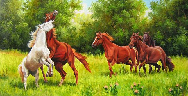 Обои Лошади резвятся на зеленом лугу на фоне деревьев и неба
