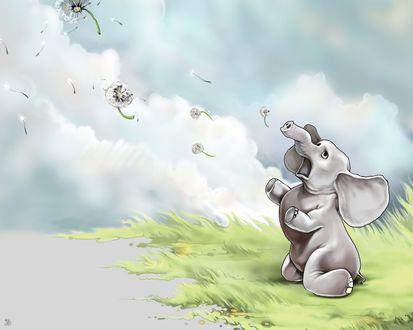 Обои Слоненок стоя на коленях, наблюдает за улетающими одуванчиками