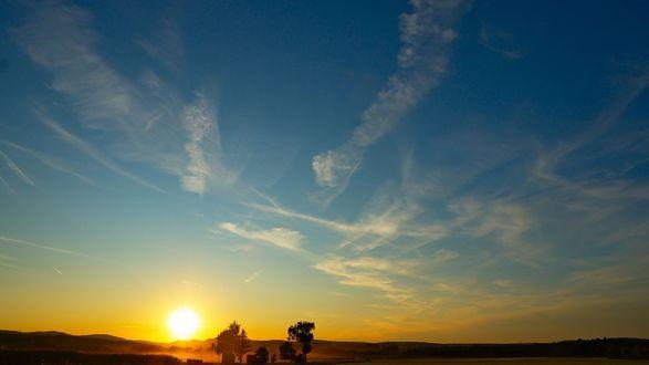 Обои Поле с редкими деревьями на фоне яркого неба на рассвете