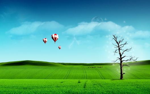 Обои Разноцветные воздушные шары, парящие в лазурном небе над ярко-зеленой пашней с одиноко стоящим высохшим деревом