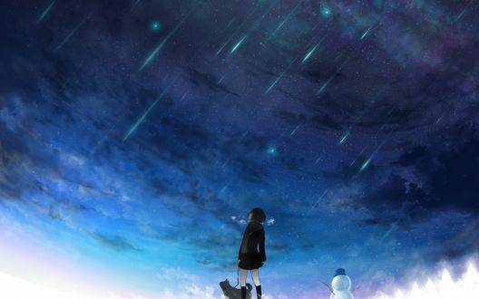 Обои Девушка гуляет с собакой на фоне звездного неба