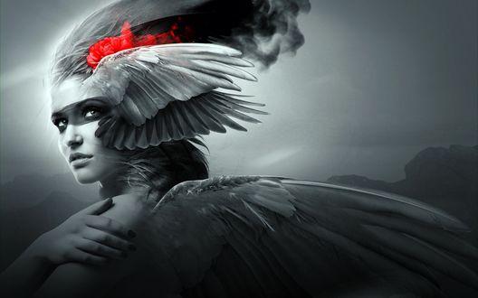 Обои Девушка - ангел с красным цветком в волосах
