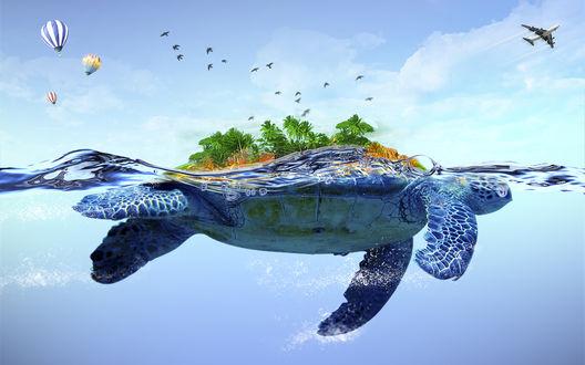 Обои Коллаж, состоящий из плывущей по морю черепахи с растущими у нее на панцире деревьями, парящими в небе разноцветными воздушными шарами, птицами и летящим пассажирским самолетом