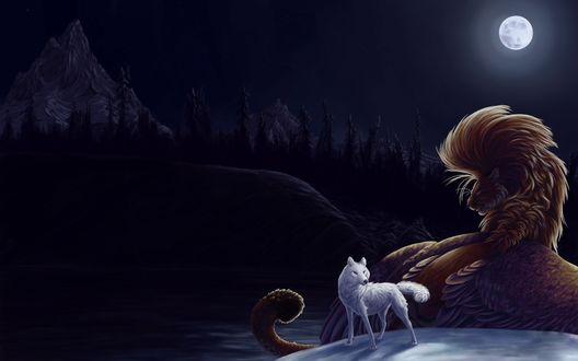 Волк на фоне луны обои 8