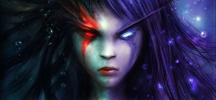 Обои Леди Вайш / арт к игре World Of Warcraft