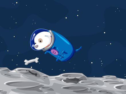 Обои Собака в скафандре парит в космосе на фоне звездного неба и кратеров планеты, рядом парит кость