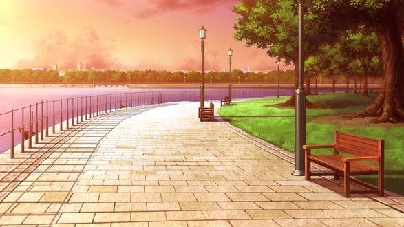 Обои Набережная реки, выложенная плиткой, огороженная металлическим заборчиком со стороны реки, со стоящими деревянными скамейками, зеленым газоном и деревьями на фоне неба с розовыми облаками