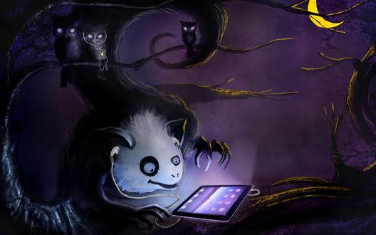 Обои Сова увлеченно смотрит на планшетный компьютер на фоне ночного неба и желтого полумесяца