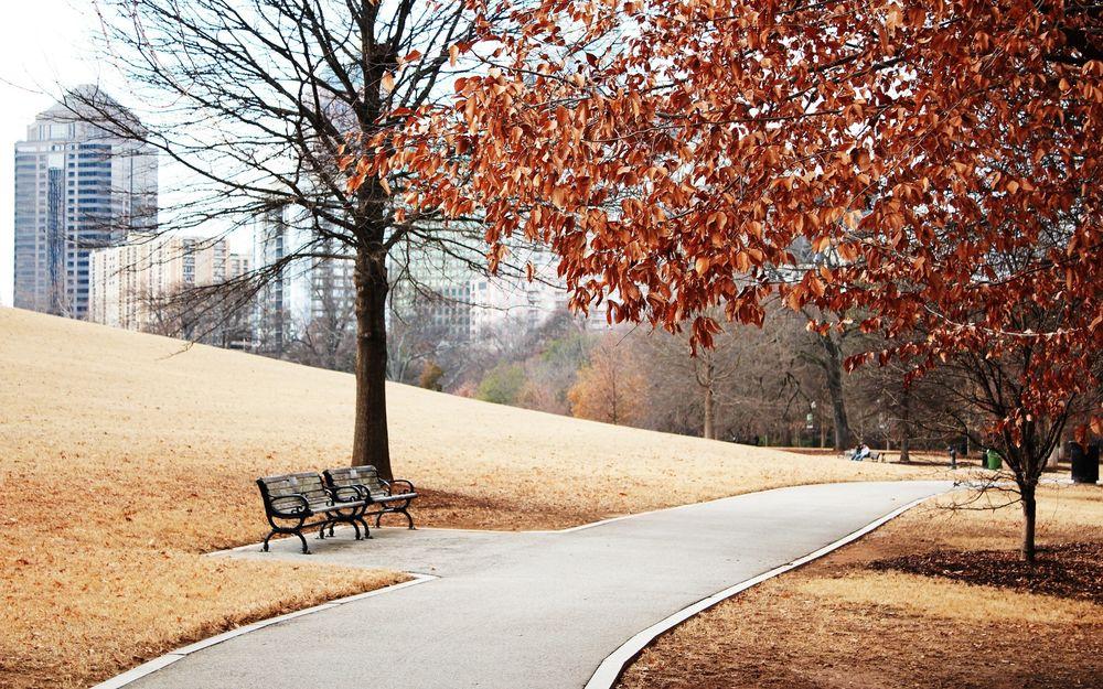 Обои для рабочего стола Осенний парк с асфальтированной дорогой и лавочками