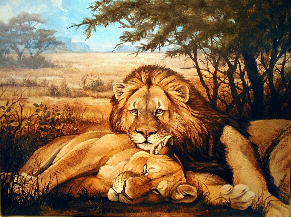 Обои для рабочего стола Лев положил голову на спящую львицу, художник Damalia