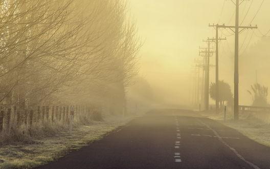 Обои Туманная дорога проходящая рядом с деревьями на фоне неба