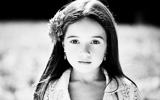 Обои Маленькая брюнетистая девочка с цветком голове смотрит прямо