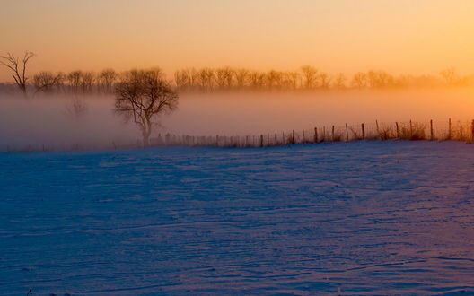 Обои Густой зимний туман над заснеженным полем