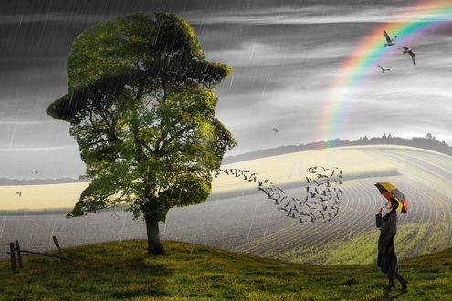 Обои Девушка с разноцветным зонтом стоит на траве рядом с деревом, листва которого имеет форму человеческой головы в шляпе, изо рта головы вылетают птицы, в небе видна радуга