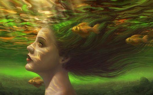 Обои Девушка с зелеными волосами под водой, рядом плавают золотые рыбки