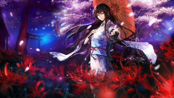 Обои Девушка в кимоно держа в руках зонт идет среди множества цветов на фоне ночного неба и дерева сакуры