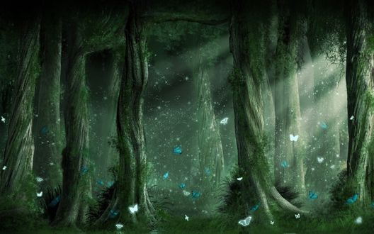 Обои Мифический лес с множеством бабочек