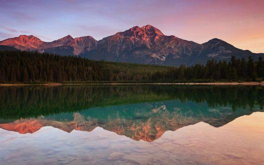 Обои Пирамидная гора и близ лежащий лес отражаются в озере Патриция / Patricia, Национальный парк Джаспер / Jasper National Park, Альберта / Alberta, Канада / Canada