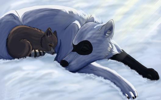 Обои Большая белая собака и лежащий у нее под боком маленький коричневый щенок, согревающийся от зимней стужи