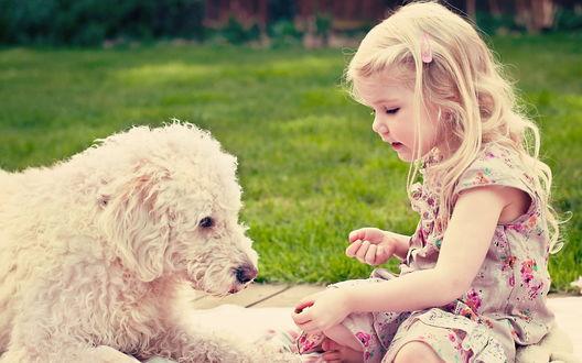 Обои Девочка, сидящая с собакой, протягвает руку с предметом на фоне травы