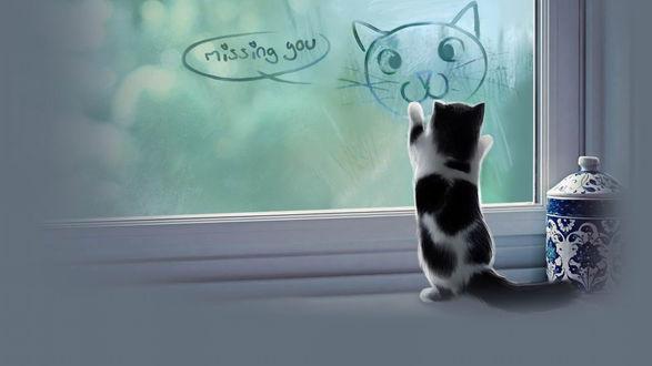 Обои Пушистый черно-белый котенок, стоящий на задних лапах, разглядывает рисунок кошачьей мордочки на оконном стекле, рядом стоит красивая фарфоровая ваза (Missing gou / Отсутствующий