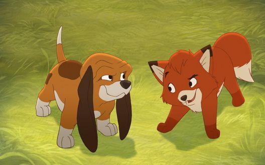 Обои Щенок и лисенок из мультфильма Лис и пес / The Fox and the Hound
