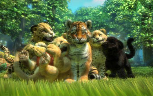 Обои Детеныши тигра, леопарда, льва, пантеры и гепарда сидят в траве на фоне деревьев