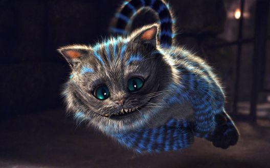 Обои Чеширский кот из мультфильма Алиса в стране чудес / Alice in Wonderland
