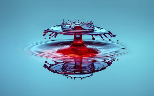 Обои Капля, упавшая в воду создает необычный вид