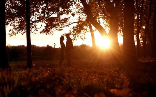 Обои Влюбленная пара держится за руки в осеннем парке, залитым солнечным светом