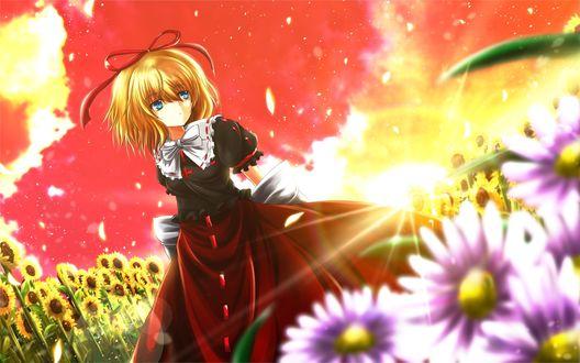 Обои Девушка в платье идет среди поля подсолнухов и разных цветов на фоне заходящего солнца